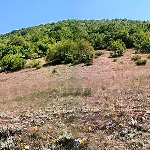 #montimarsicani che circondano e non solo la valle #marsica #marsi