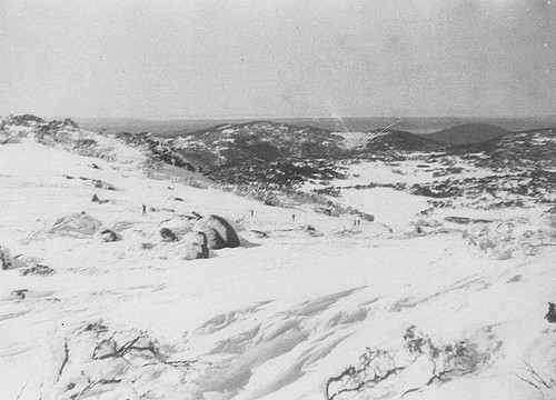 On the top of the Back Perisher looking down to the road.