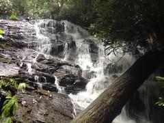 Vandiver Falls