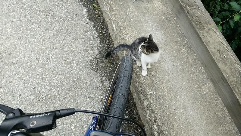 Bike-Kuscheln