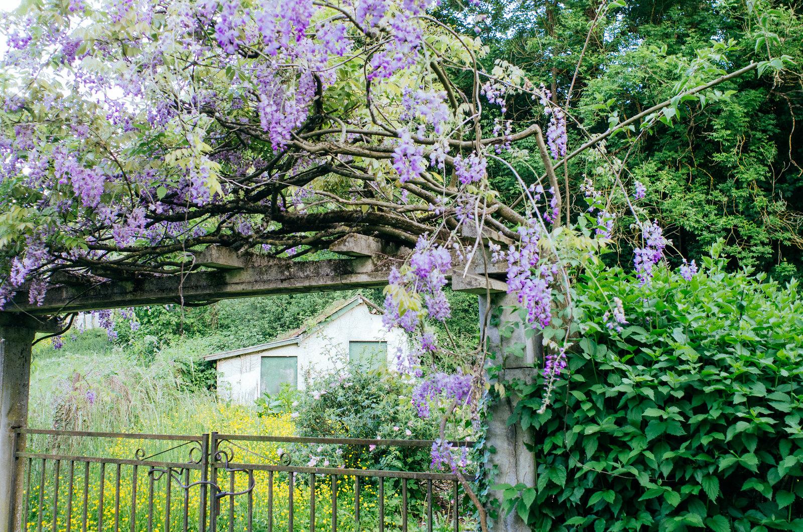 Road trip en France - Jardin au bord de la Meuse