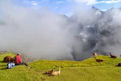 Machupicchu cusco, Perú