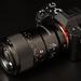 SONY FE 90mm F2.8 MACRO G OSS by koimaru7
