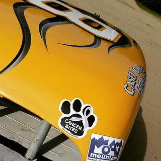 Finally got the #cancerbites decal on the #racecar #8 #HooliganMotorsports #caninecancerawareness #uslegendscars #inexlegends #racing #cancersucks #ilovemydogs #missthem ❤Lola❤ ❤Zeus❤