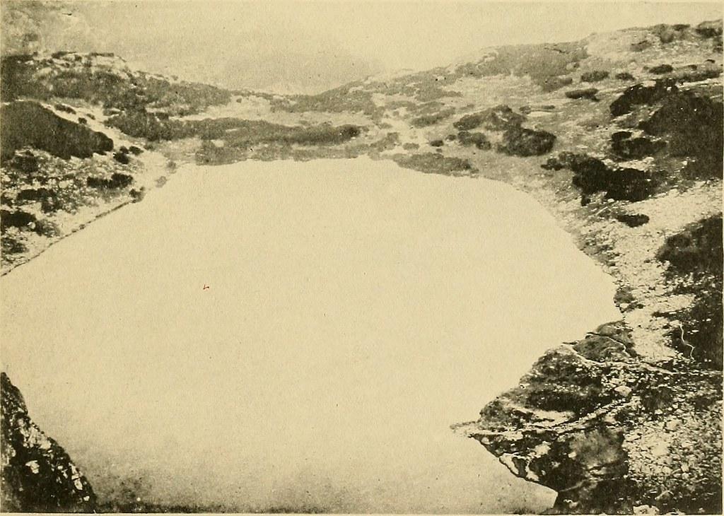 """Image from page 434 of """"Buletinul Societatii de Sciinte din Bucuresci, România = Bulletin de la Société des sciences de Bucarest, Roumanie"""" (1892-1911.)"""