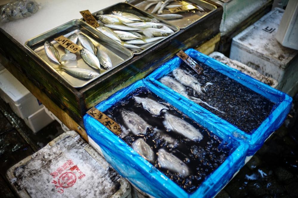 風情文化/探访世界上最具传奇色彩的东京築地魚市 Tsukiji Fish Market14