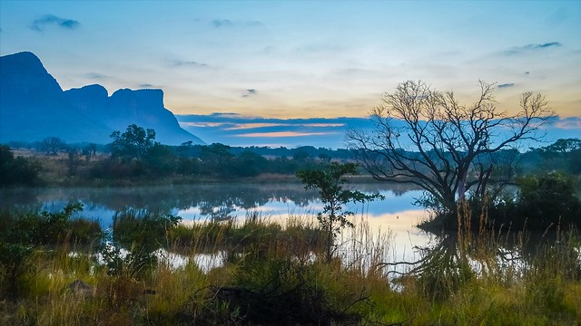 Magnificent South African Bushlands
