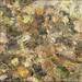 Watery impression by kimbenson45