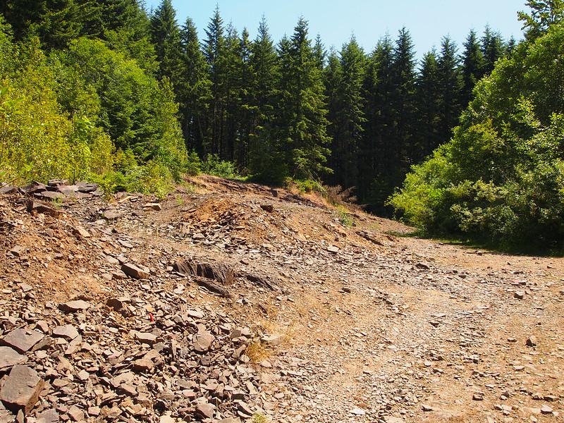 Abandoned Shale Pit