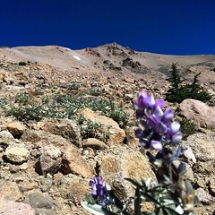 Heading up #Lassen Peak. Lassen Volcanic National Park #nps