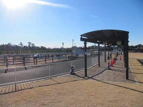 中山競馬場のポニーリンク