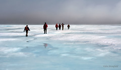 Into the Unknown: Traversing Arctic Ice