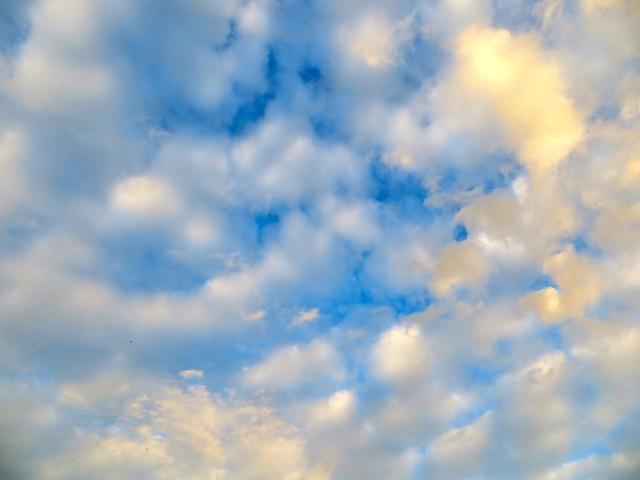 monday morning sky