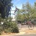 Atop the Davis Boneshaker/Ordinary/High Wheel by whymcycles