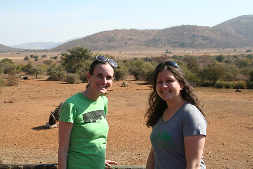 The Americans with a hippo and a wildebeest in the background