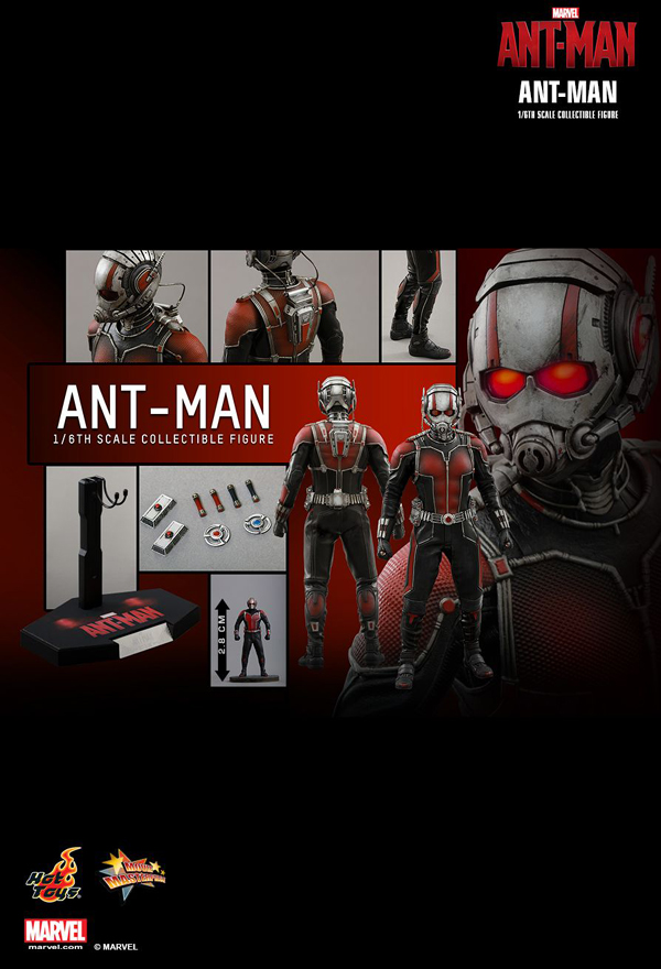 Hot _Toys_Ant_Man_05