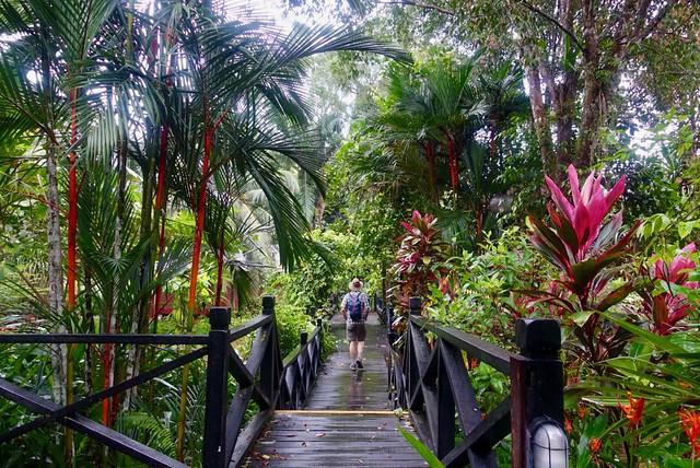 Sepilok Resort gardens