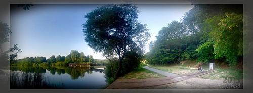 híd nyár deseda víz túrázás tópart somogymegye fahíd
