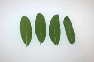 02 - Zutat Salbei / Ingredient sage