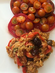 Greek Oregano Chicken and Orzo with Tomatoes in Ga…