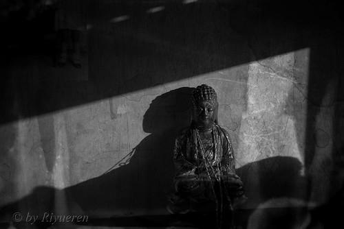Lights of Buddha