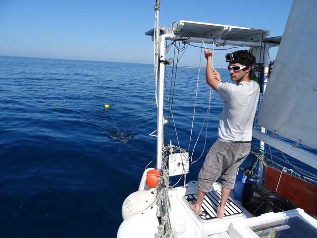 Prélèvement de plancton