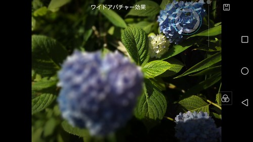 Screenshot_2015-06-24-15-03-52.jpeg