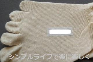 ピータッチ靴下3