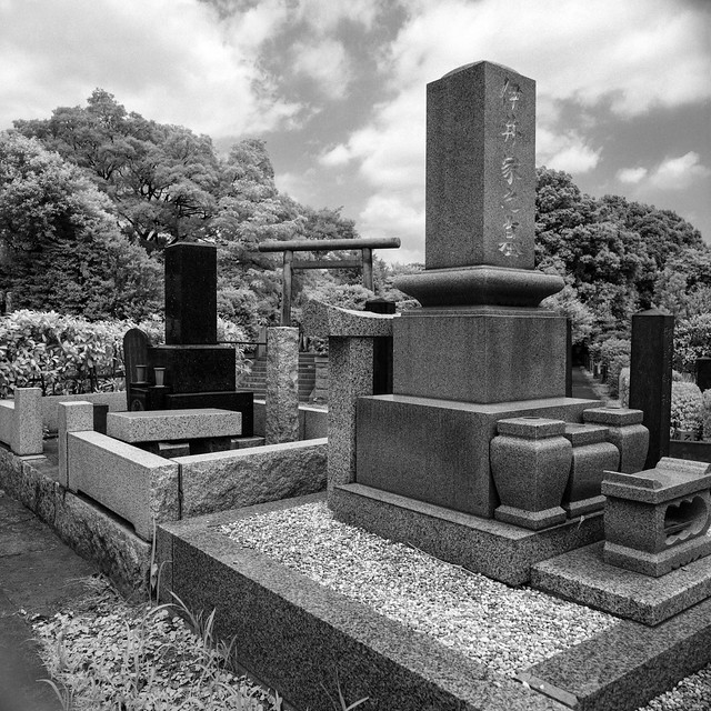 Tokyo - Yanaka Cemetery 2