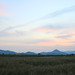 Suncheon Bay by Laetitia Green Tape