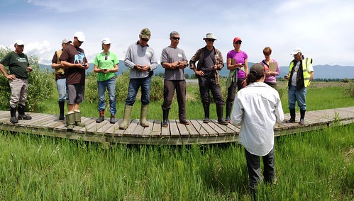 gps mapping wetland creston citizenscience bcwf wetlandseducationprogram mapourmarshes crestonwildlifemanagementcentre wetlandsforlife