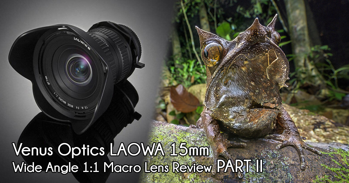 Part II Review of Venus LAOWA 15mm Wide Angle Macro Lens
