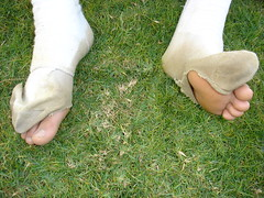 hand(0.0), outdoor shoe(0.0), arm(0.0), footwear(0.0), shoe(0.0), barefoot(0.0), human body(0.0), grass(1.0), limb(1.0), leg(1.0), foot(1.0), toe(1.0),