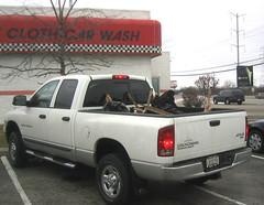 chevrolet silverado(0.0), automobile(1.0), automotive exterior(1.0), pickup truck(1.0), vehicle(1.0), truck(1.0), dodge dakota(1.0), ram(1.0), bumper(1.0), land vehicle(1.0),