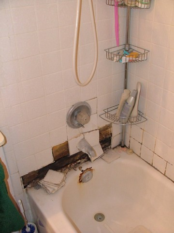 Bathroom Remodel - Before 003