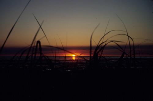 travels washington sunset