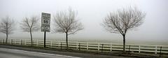 San Joaquin Fog
