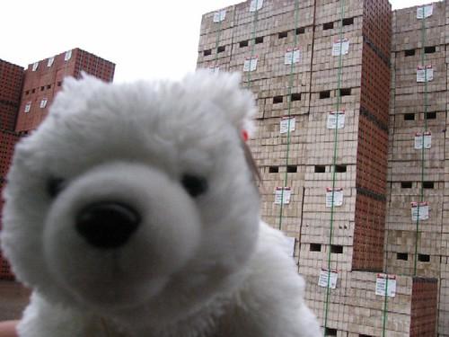 Louie and the Bricks!