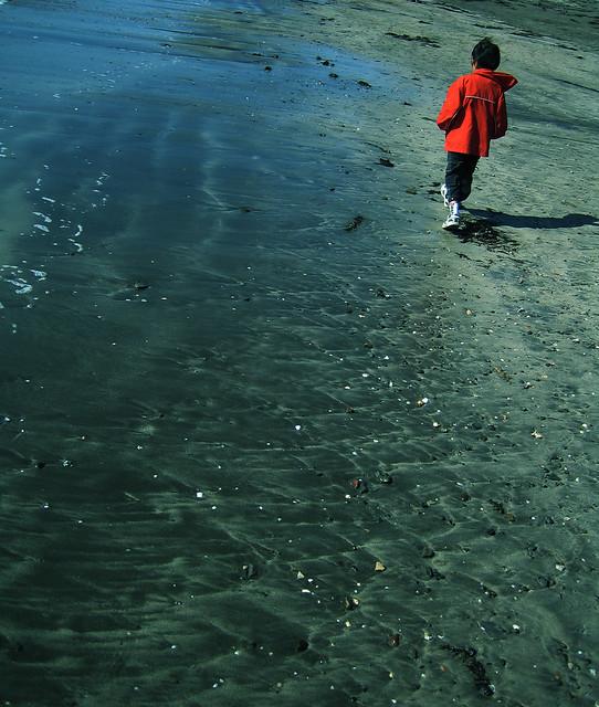 on the seashore, Canon IXY DIGITAL 50