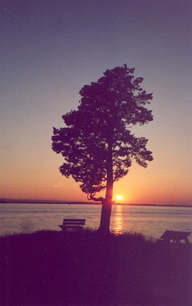 burtonisland sunset southpoint