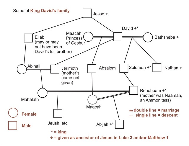 Some of King David's family