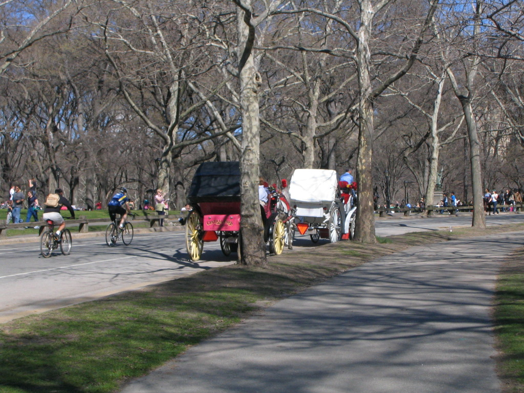 cyclists and horsecarriages in CentralPark
