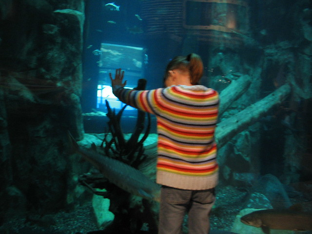 Great Lakes Aquarium Duluth Mn Flickr Photo Sharing
