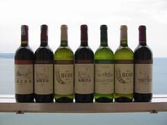 drinkware(0.0), glass bottle(1.0), wine(1.0), label(1.0), distilled beverage(1.0), liqueur(1.0), bottle(1.0), white wine(1.0), drink(1.0), wine bottle(1.0), alcoholic beverage(1.0),