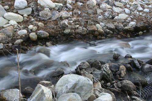 stream with rocks