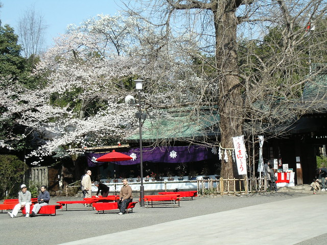 Omiya Hachiman Shrine / 大宮八幡宮