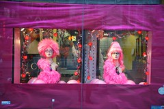 purple, display window, pink, doll, toy,