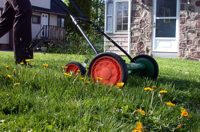 Lawnmower from Flickr via Wylio