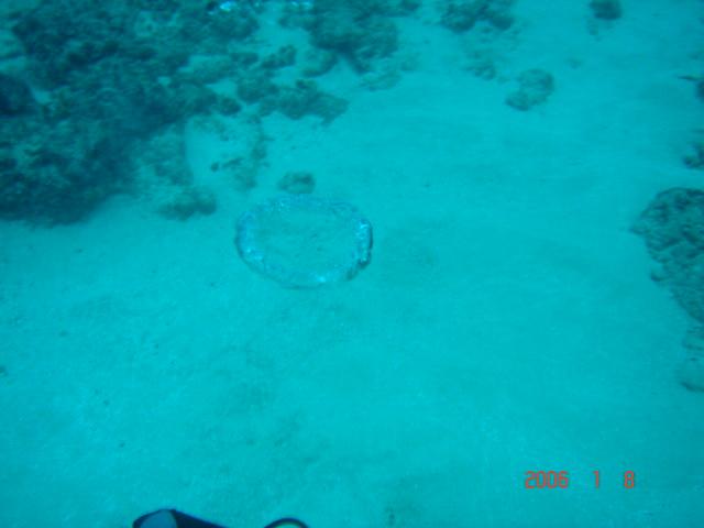 air bubble