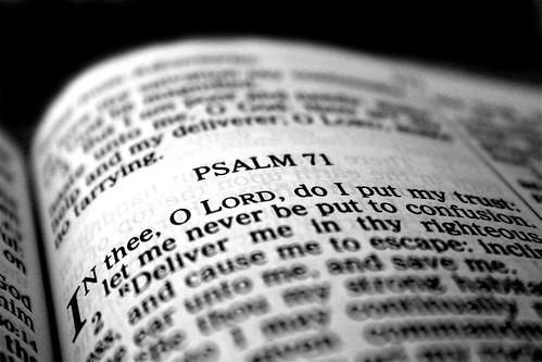 scripture photo